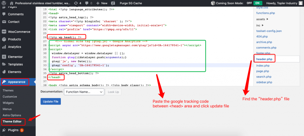 paste google tracking code.