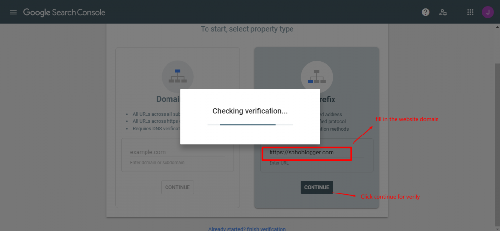 fill in the website domain for verify